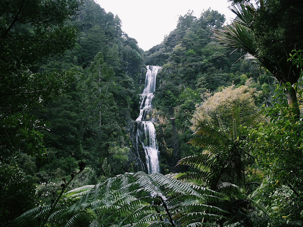 Kite Kite Falls - 54 Hours in New Zealand